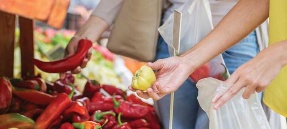 V TRGOVINI kot vrečka za sadje/zelenjavo, DOMA kot vrečka za zbiranje organskega odpadka.